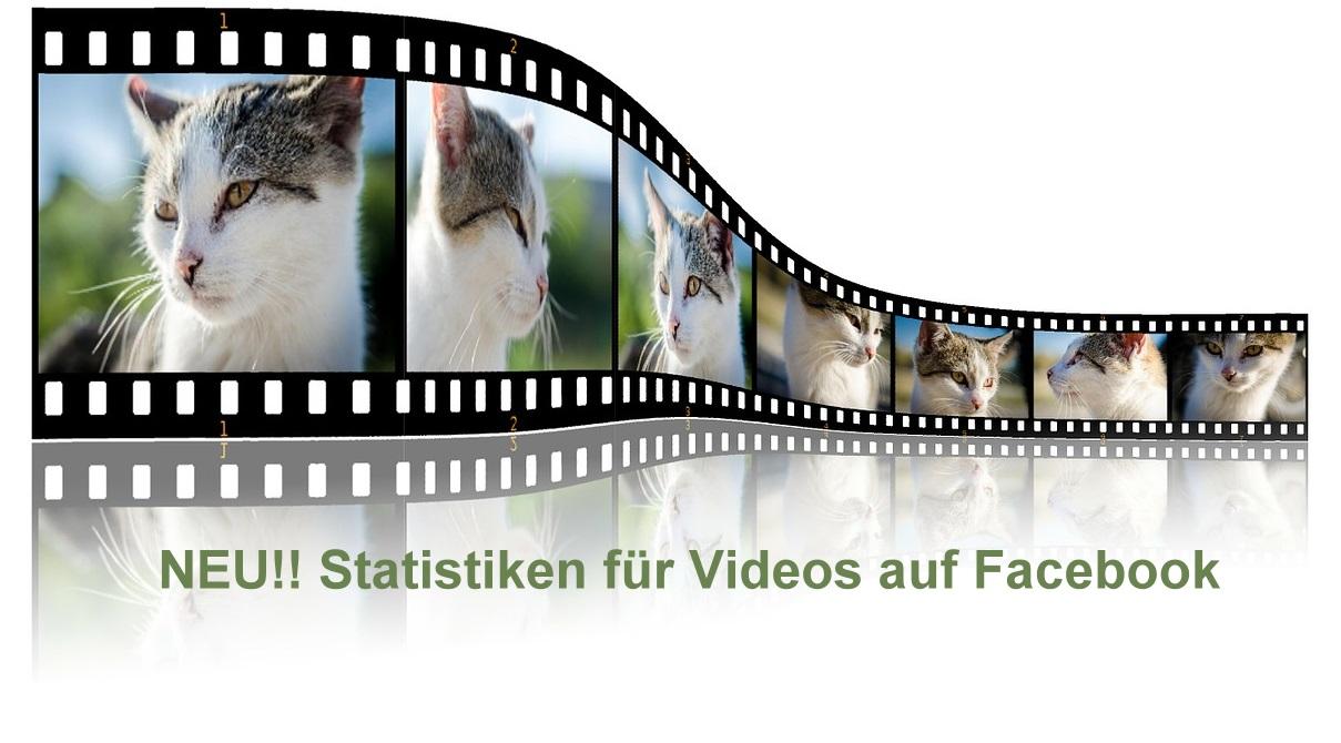 Statistiken fuer Videos auf Facebook